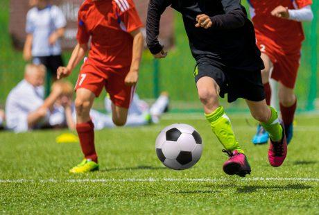 Piłkarze biegną po zielonej murawie za piłką, nie widać ich twarzy