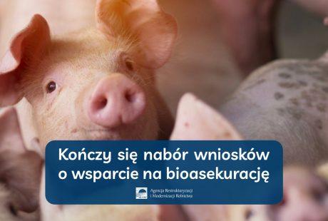 Kończy się nabór wniosków o wsparcie na bioasekurację