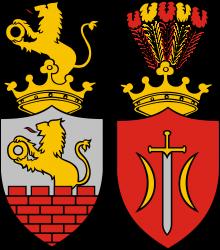Na ilustracji jest żółto-czerwony herb miasta Zduńska Wola